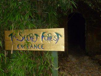 The Secret Forest Kelburn Castle and Estate