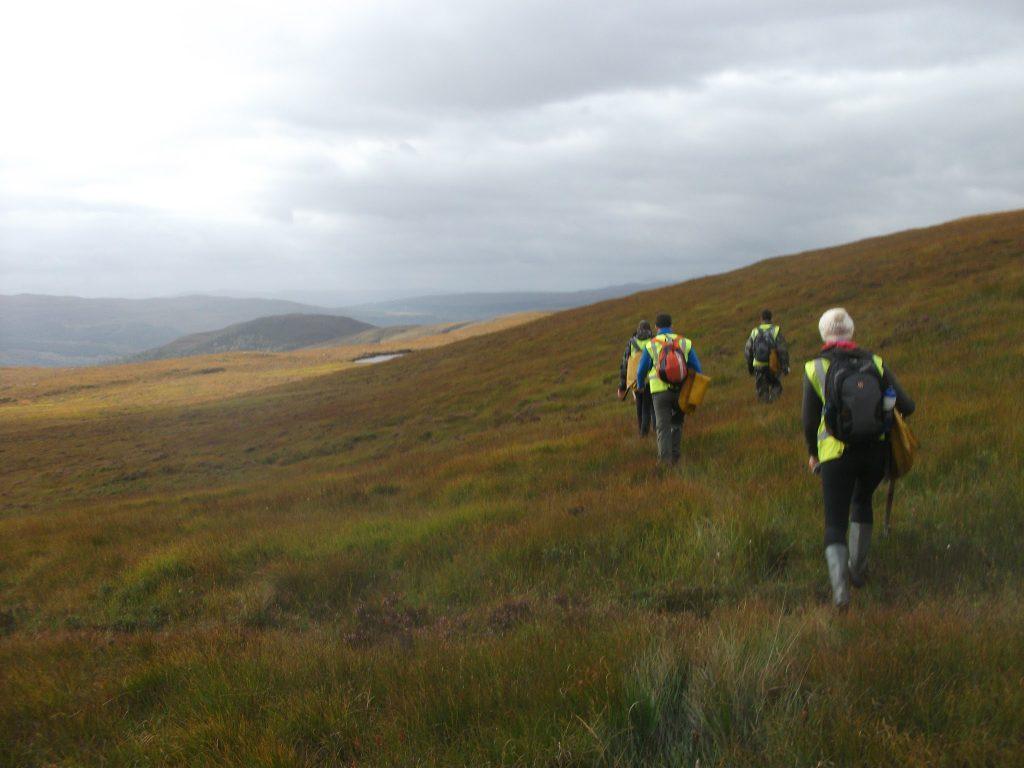Hard at work in the Highlands near Dundreggan in the Highlands