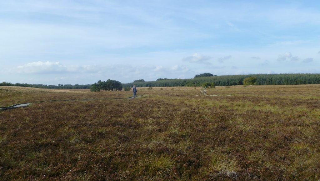 Blawhorn Moss National Nature Reserve