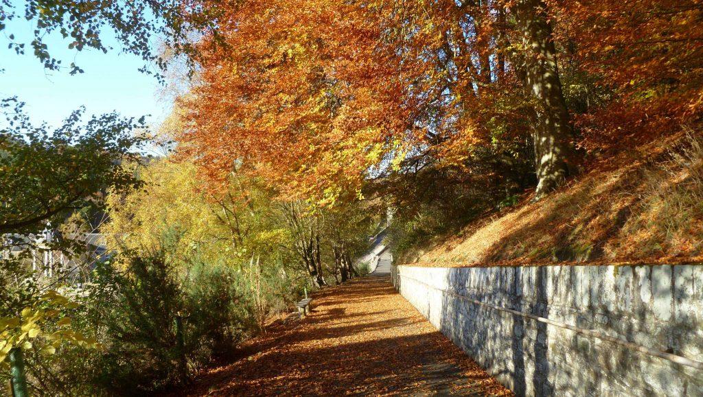Pathways of New Lanark